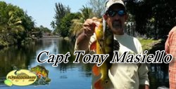 Capt Tony - Florida Peacock bass fishing guides