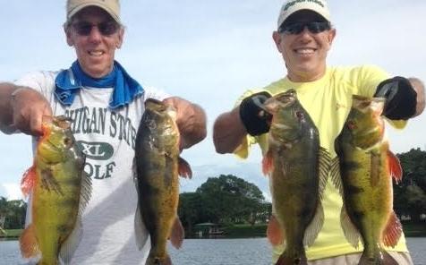 Lake Ida Bass fishing