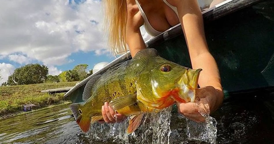 Best South Florida lakes for Peacock bass fishing